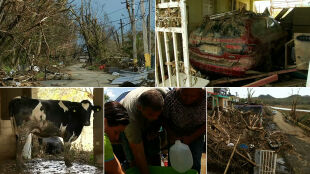 Paliwo na wagę złota. Mieszkańcy usuwają skutki huraganu Maria