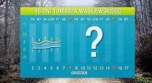 Pogoda na 16 dni: coraz więcej chłodnych dni