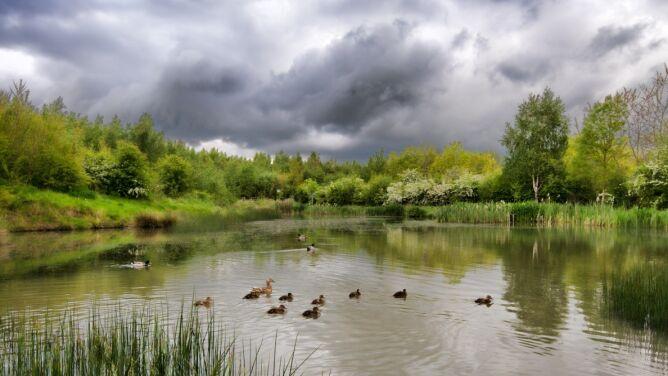 Prognoza pogody na dziś: <br /> chwilami pochmurno, deszczowo i burzowo