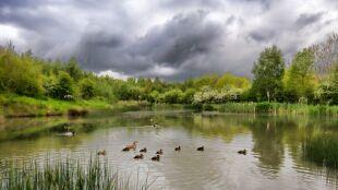 Prognoza pogody na dziś:  chwilami pochmurno, deszczowo i burzowo
