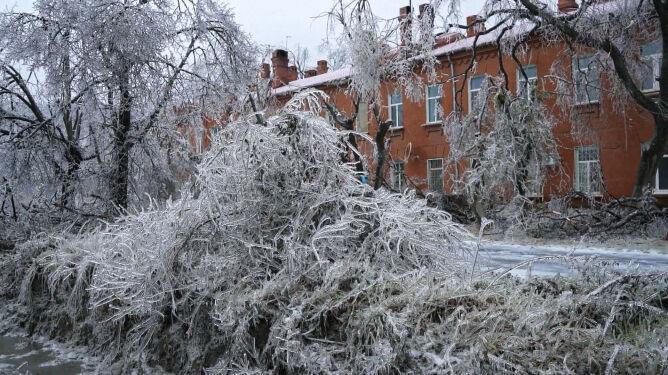 Katastrofa pogodowa w Kraju Nadmorskim (ENEX)