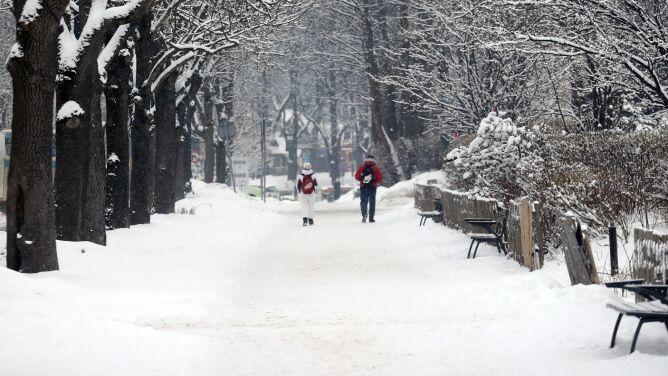 Pogoda na dziś: dosypie śniegu, lokalnie 17 stopni mrozu